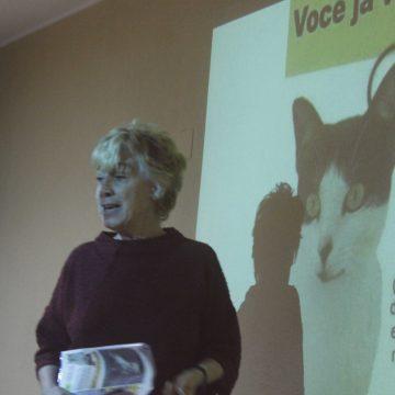 Doações de bens para animais afetadas devido à COVID